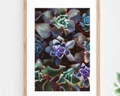 Succulent Cactus Printable Wall Art Instant Download Green Purple Tropical Pattern Contemporary Wall Art Printable Poster Digital Print Art