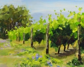 Vineyard - Quick Sketch