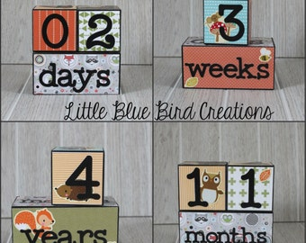 Childrens age blocks custom wood blocks photography prop birthday decor nursery decor