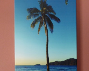 Beach Wall Canvas - Art Photography - The lonely Palm - Sunset