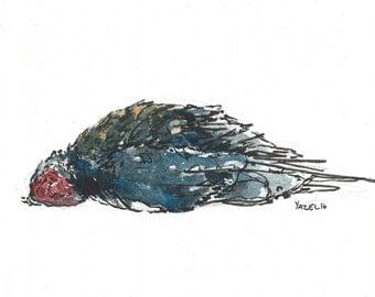 DeadBird005 - Print of my original illustration