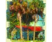 Colorful Palms Trees Old House Caribbean Tropical Coastal 8x10 16x20 Glicee Print - Palm Shack - Korpita