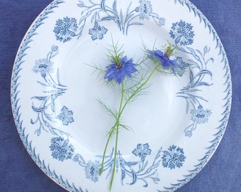 Six french antique plates, six french vintage plates, luneville plates, french blue and white plates