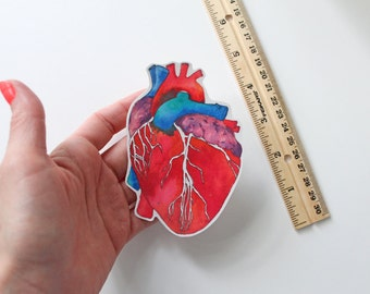 """Shop """"anatomical heart"""" in Paper & Party Supplies"""