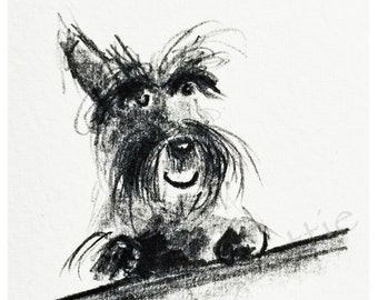 Happy Scottie Dog  Art Print A5 Scottish Terrier