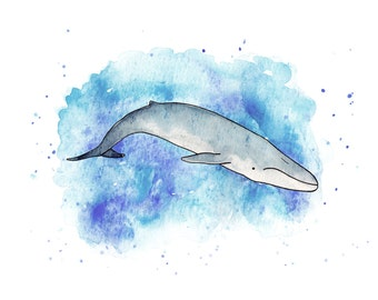 Blue whale in watercolour