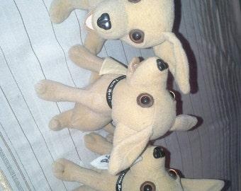 Hungry Chihuahua's 3 stuffed animals Chi dog