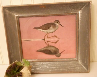 Sandpiper Picture, Bird Wall Decor, Pink and Gray, Beachy Wall Decor