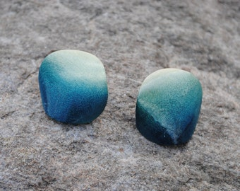Green and Blue Wooden Earrings