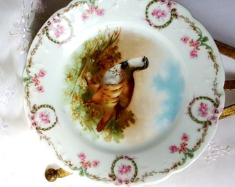 Antique circa 1880 Bavaria Game Bird Plates Pattern ZSC62 by Z S & Co