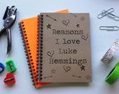 Reasons I love Luke Hemmings (not a personalized journal) - 5 x 7 journal