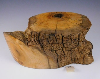 New Mexico cotton wood burl box