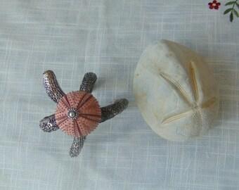 A silver- plated sea urchin bracelet,  real sea treasure.