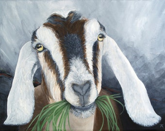 "Nubian Goat, ""As Good As It Gets"" giclée print from original painting"