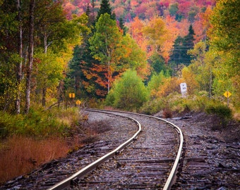 Autumn color along a railroad track in White Mountain National Forest, New Hampshire. | Photo Print, Stretched Canvas, or Metal Print.