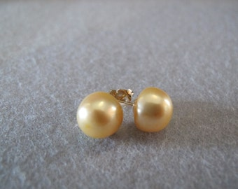 11mm Golden South Sea Pearl Solid Gold Earrings