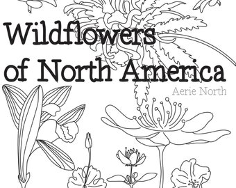 Coloring Book For Adults Wildflowers Of North America PDF Downloadable 53 Pages