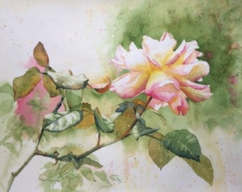 Rose Bloom Original Watercolor Painting - Flower, Floral