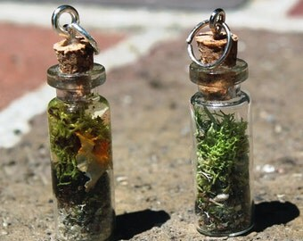 28mm x 10mm Terrarium and Aquarium Miniature Bottle Charms
