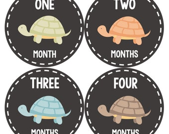 Monthly Baby Stickers, Neutral Monthly Bodysuit Stickers, Monthly Stickers, Baby Month Stickers, Baby Monthly Stickers, Turtle 1090