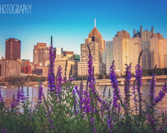 Pittsburgh Flowers (Cityscape, flowers, downtown, dawn, dusk, sunset, river)