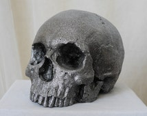 HUMAN SKULL REPLICA Antique Silver Finish, full size human skull replica (plaster of Paris) painted for a tarnished silver effect