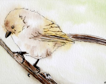 Bushtit Mini Watercolor Painting