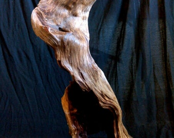Sculpted By The Elments Natural Driftwood Sculpture Driftwood Art Rustic Wood Sculpture