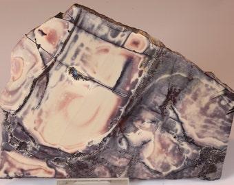 Exquisite Porcelain Sci Fi Exotica Jasper Slab