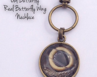 Real Butterfly Wing Necklace - Owl Butterfly