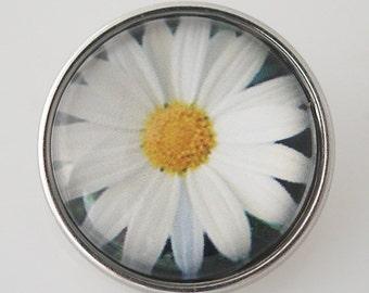 K4327 Beautiful Daisy Art Glass Print Snap