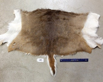 Soft Tanned Whitetail Deer Half Hide #5