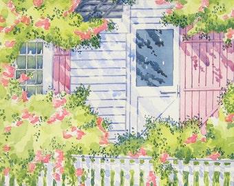 Summer Roses, Nantucket