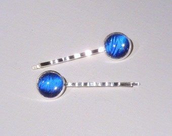 Real Morpho Butterfly Wing Hair Bobby Pins Set of 2 Silver Jewelry