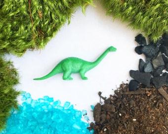Dinosaur Terrarium Kit, DIY Terrarium, Moss terrarium