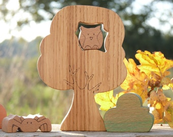 Tree in the forest with a nifty nestled inside wooden
