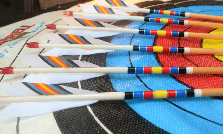 Archery Arrows Wood Arrows Target Cresting