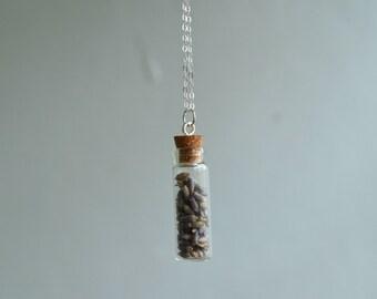 Sterling Silver Lavender Vial Necklace