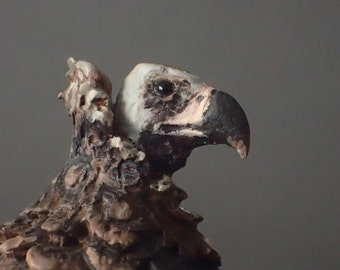 cinereous vulture model (aegiphyus monachus) 1:20/resine/Hand painted/ collector