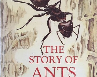 The Story of Ants, Dorothy Shuttlesworth , Illustrated Su Zan Swain , Copyright 1964 , Ants , Childrens Book, Illustrated Childrens Book