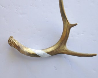 Gold & White Antler Shed