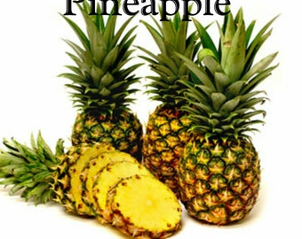 Pineapple Candle/Bath/Body Fragrance Oil ~ 1oz Bottle