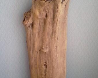 Large Cedar Root Burl, Half Trunk