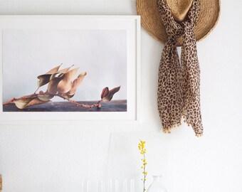 Fine art photography print SLEEPING BEAUTY