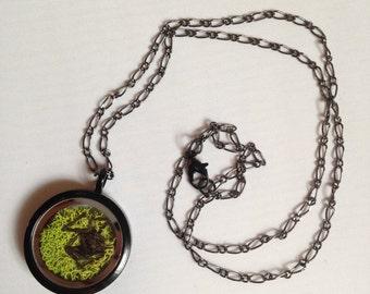 Real black widow window locket black necklace
