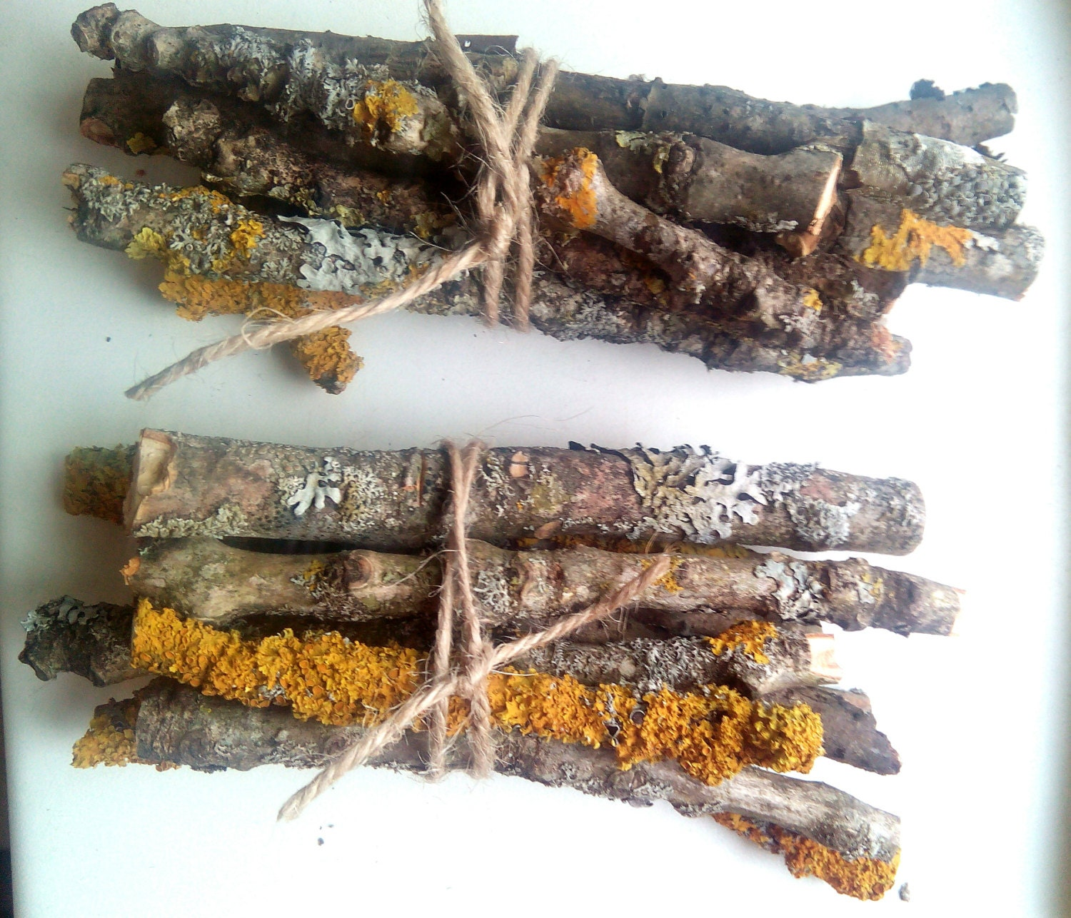 Dried mossy branches Cut Twigs for craft natural wood sticks