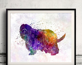Bergamasco Shepherd 01 in watercolor - Fine Art Print Poster Decor Home Watercolor Illustration Dog - SKU 1441