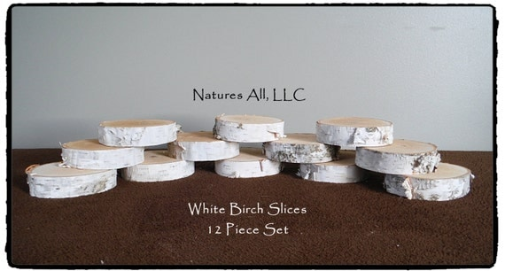 """White Birch Slices/White Birch Disks/.75""""-1"""" thickness/3.5""""-4.5"""" Diameters/12 Piece Set/Shipping Is Included!/ Item# WBS-1000"""