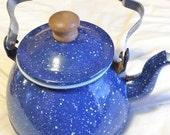 Speckled Tea Kettle