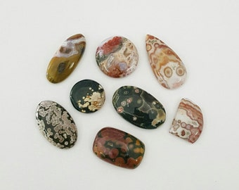 8 Pcs Lot of Ocean Jasper